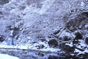 三十槌の氷柱 雪