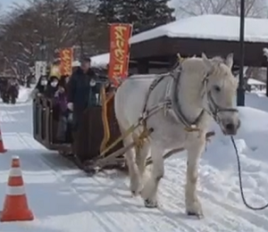 旭川冬まつり 馬車