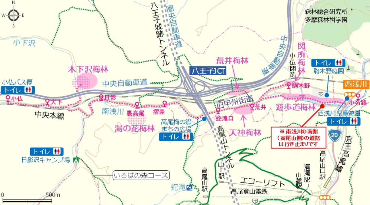 高尾梅郷 梅林 地図