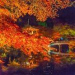醍醐寺の紅葉2019!見頃時期やライトアップは?拝観料や予約は?