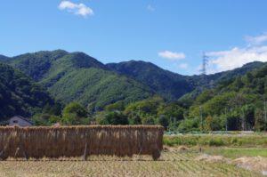 御岳山 風景