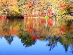 軽井沢 雲場池 紅葉と逆さ紅葉