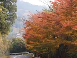 英彦山 景色