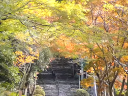 英彦山 アクセス