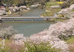 佐久間ダム公園 駐車場