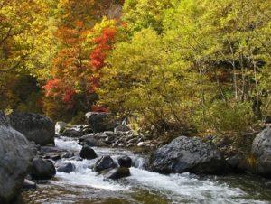 八幡平 松川渓谷