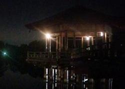 奈良公園 ライトアップ