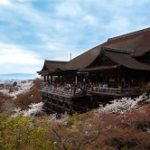 京都清水寺 桜 舞台