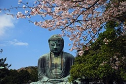 鎌倉大仏 観光名所