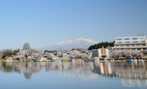 高松の池と満開の桜と岩手山
