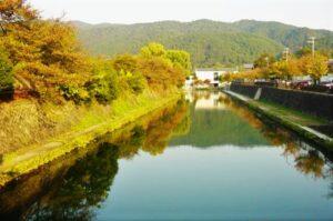 岡崎公園 平安神宮 黄葉