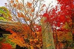 平安神宮 周辺