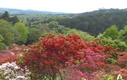 笠間つつじ公園 山頂から見た景色