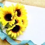 【8月】時候の挨拶(書き出し)と結びの言葉!手紙・はがきの書き方例文。