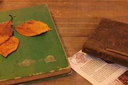 読書の秋 イメージ