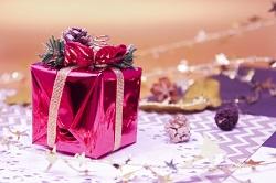 高校生 女子 クリスマスプレゼント