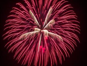 赤色の大輪 打ち上げ花火