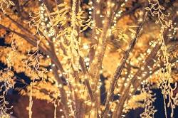 大阪市 クリスマス デート