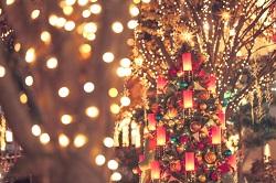 静岡県 クリスマスデート
