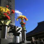 お墓参り 供花