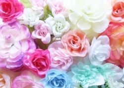 花束 色 種類