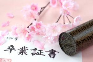 卒業証書 桜の花